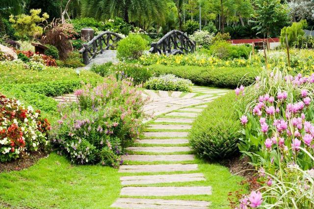 owady, pożyteczne owady, ogród