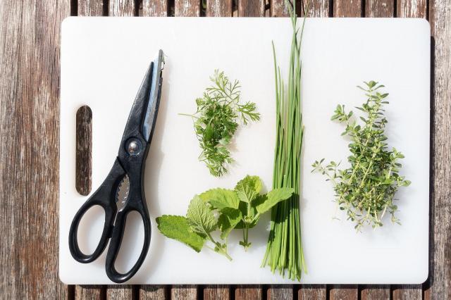 Co powinno znaleźć się w kuchni pasjonata gotowania?