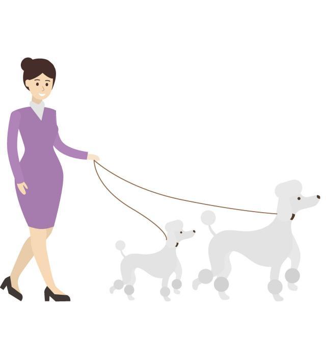 zwierzęta domowe, rasy psów, psy