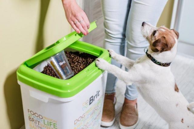 karma dla psa, material prasowy