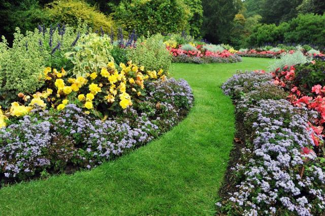 5 czynności, które musisz wykonać w ogrodzie na wiosnę