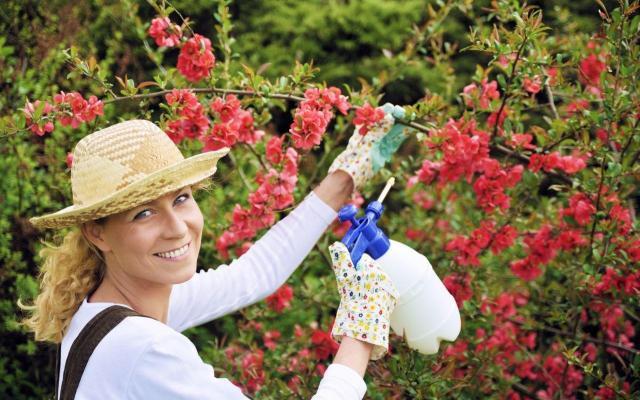5 pielęgnacyjnych zasad ogrodu, których warto się trzymać