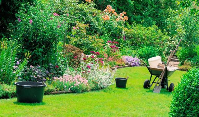pielęgnacja ogrodu