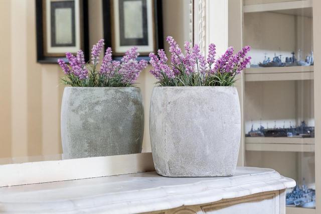 5 najpiękniejszych kwiatów do domu na jesień