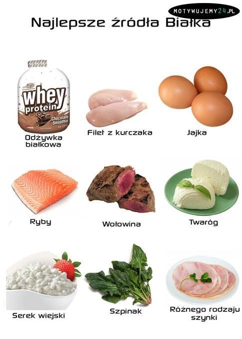 dieta białkowa, dieta, artykuł sponsorowany