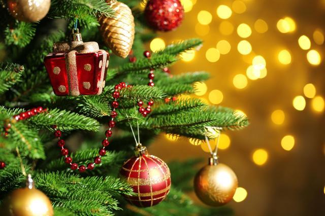 Idealne drzewko na święta, czyli na co musisz zwrócić uwagę wybierając choinkę